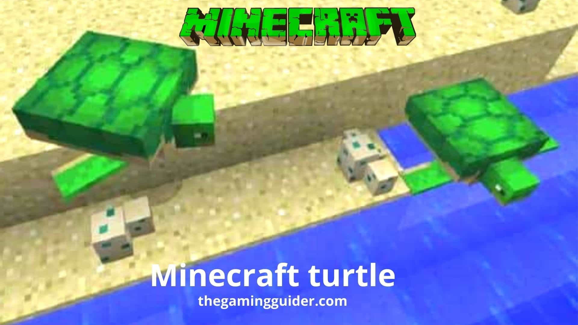 Minecraft turtle- the gaming guider