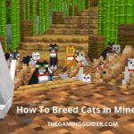 How To Breed Cats in Minecraft -the gaming guider