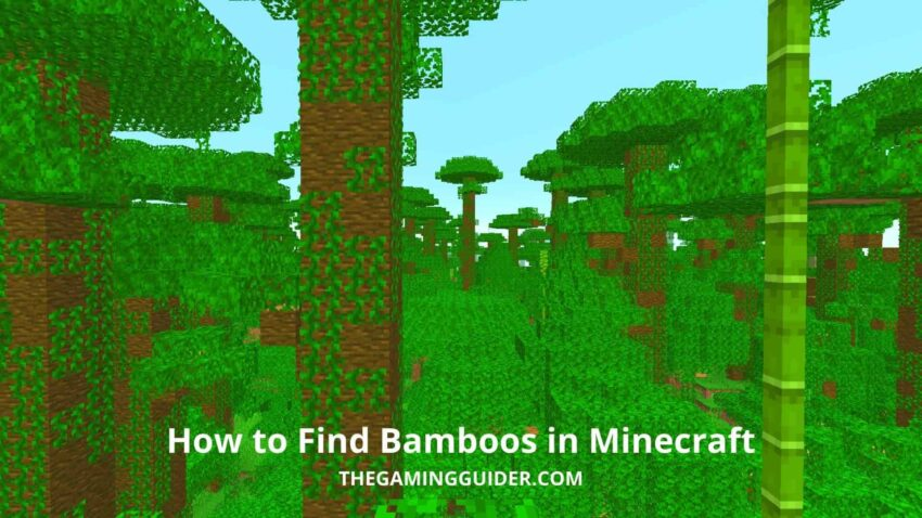 How to Find Bamboos in Minecraft-the gaming guider